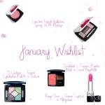 january_2014_wishlist
