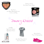 january_2015_wishlist
