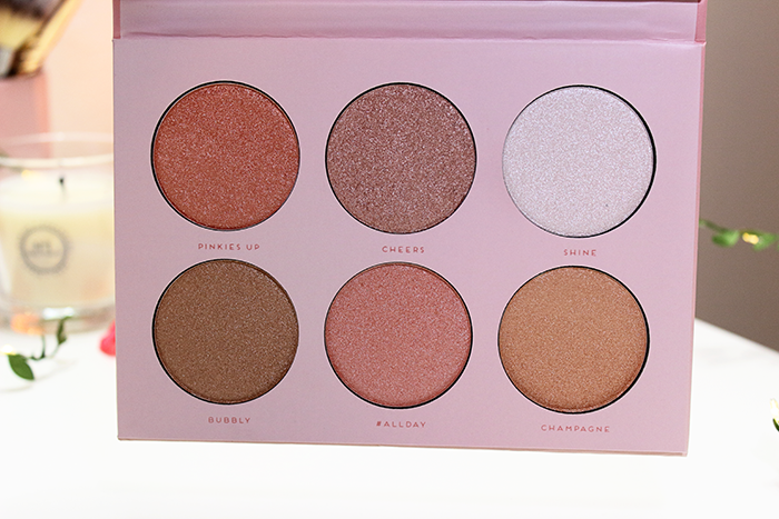 Bad Habit Rose Highlight Collection